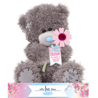 Me to You - A Sister Is Worth A Thousand Friends Plush Bear