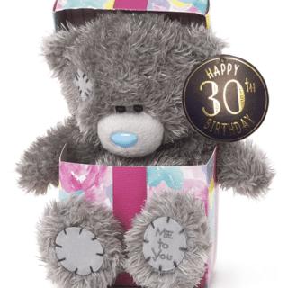 Me to You - Happy 30th Birthday Plush Bear