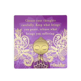 Little Buddha – Fridge Magnet – Choose Your Thoughts
