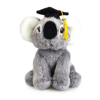 Lil Friends Graduation Koala 15cm