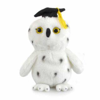 Lil Friends Graduation Owl 15cm