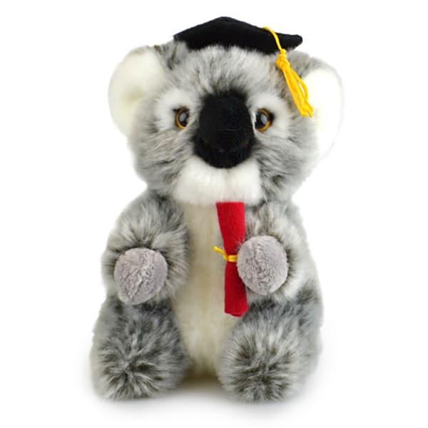 Lil Friends Graduation Koala 18cm