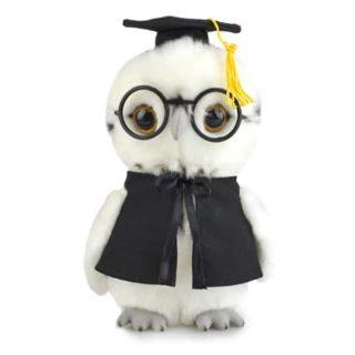 Lil Friends Graduation Owl 18cm